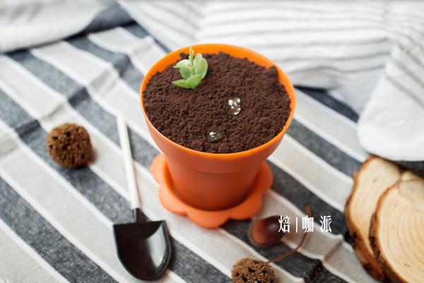 提拉米苏版的【盆栽蛋糕】