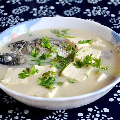 初秋养生汤——鲫鱼豆腐汤