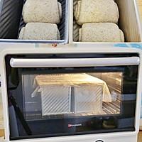 全麦吐司(波兰种)38%全麦粉的做法图解4