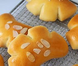 一次发酵|升级版熊掌卡仕达面包的做法