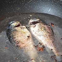 初秋养生汤——鲫鱼豆腐汤的做法图解4
