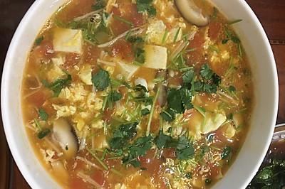 西红柿菌菇汤