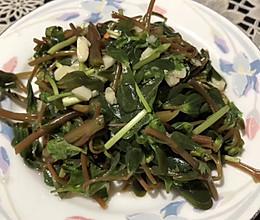 马齿苋拌菜的做法