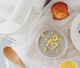 【小米润养豆浆】的做法