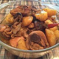 鸡肉香菇炖土豆的做法图解8