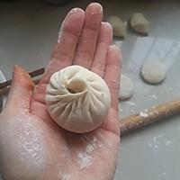 蒜蓉酱肉包(附详细捏包子法)的做法图解11