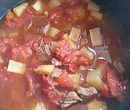 西红柿炖牛腩(电饭锅版超简单的做法