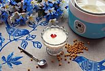 大豆酸奶的做法