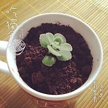 奥利奥绿豆粥盆栽