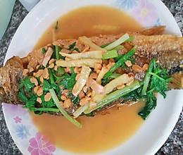 普宁豆酱焖黄花鱼的做法