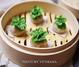 翡翠白菜蒸饺---超级美味的莲藕馅儿的做法