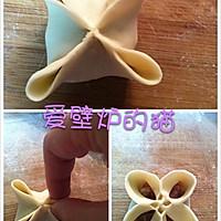 花式饺子--饺子的35种包法的做法图解25