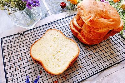 家庭必备【牛奶主食面包】