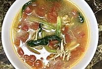 西红柿炖金针菇的做法
