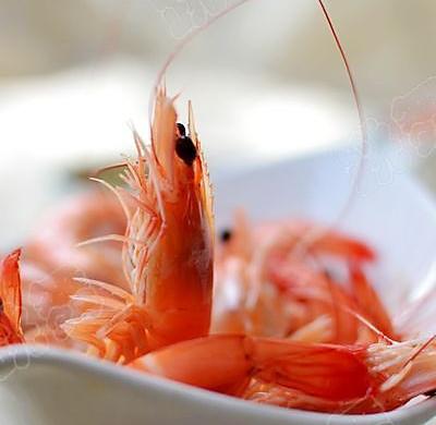 【白灼虾】活虾最原味的做法