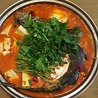 贵州酸汤鱼的做法图解12