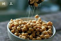 大脸牛纳豆发酵菌自制纳豆的做法