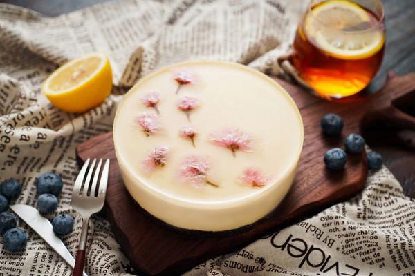 日食记丨酸奶冻芝士蛋糕的做法