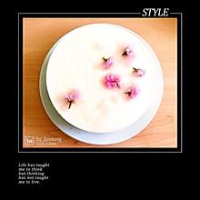 樱花冻芝士蛋糕
