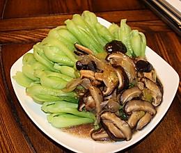 分分钟搞定的香菇油菜 适合忙碌的上班族的做法
