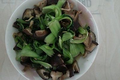 素食主义者的香菇青菜配
