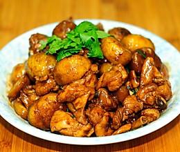 红烧板栗鸡块 金秋时节最应季的家常菜的做法