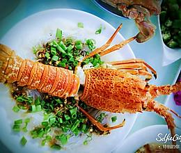 澳洲大龙虾的做法