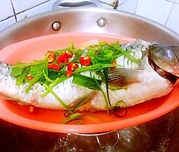 减肥养生餐——清蒸鲤鱼的做法