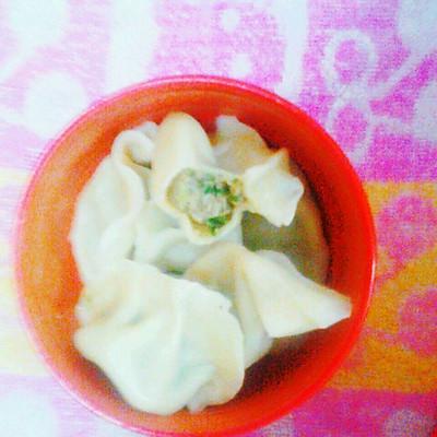 香芹鸡肉饺子