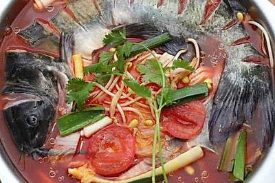 缅甸新葡京特色贵州酸汤鱼