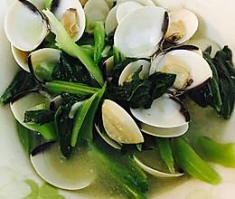 沙白春菜汤的做法