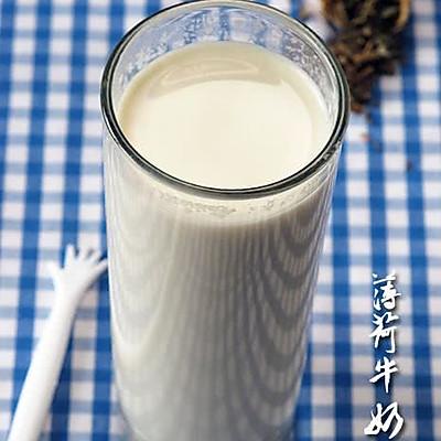 """解""""困""""解""""痒"""":薄荷牛奶饮"""