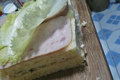健康饮食金枪鱼三明治