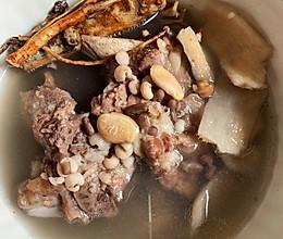 广东靓汤—五指毛桃健脾祛湿汤的做法