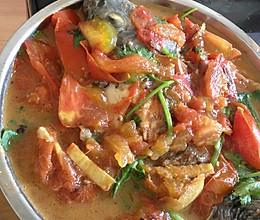 西红柿炒福寿鱼的做法