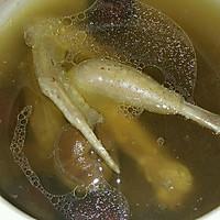 清炖鸽子汤的做法图解3
