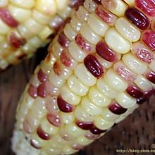 懒人版的烤香玉米