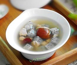 火龙果猪腱子汤的做法