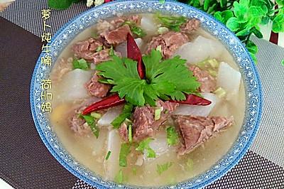 萝卜炖牛腩(清炖)