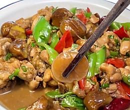 板栗烧鸡丨秋食板栗,健胃补肾的做法