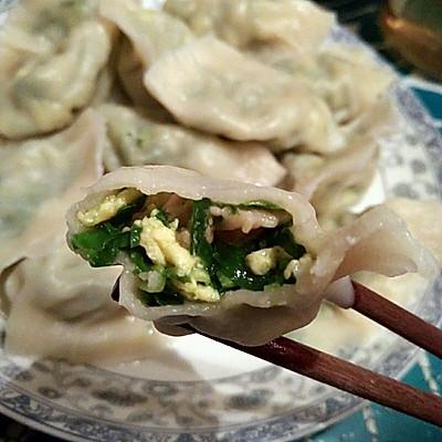 韭菜蚬子饺
