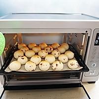 蔓越莓麻薯面包#美的烤箱菜谱#的做法图解9