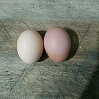 菠菜炒鸡蛋的做法图解1