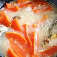 木瓜鲈鱼汤的做法图解6
