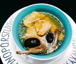 花胶老鸽汤的做法