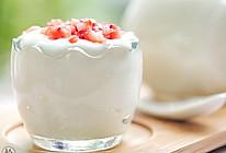 自制无糖酸奶的做法