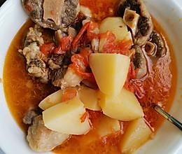 酸甜开胃的番茄牛尾汤的做法