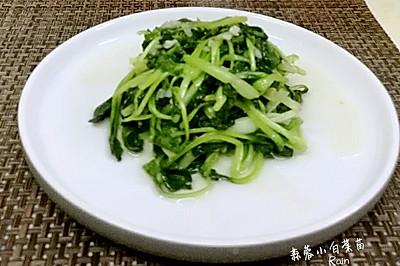 蒜蓉小白菜苗