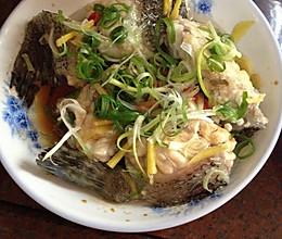 清蒸龙胆鱼的做法