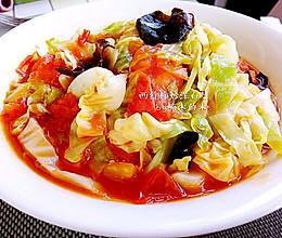 西红柿炒洋白菜~或者番茄卷心菜的做法